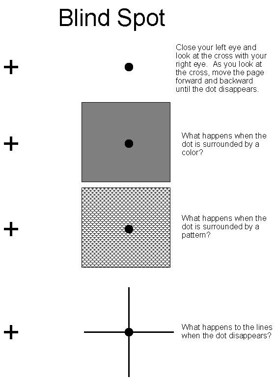 picture relating to Blind Spot Test Printable known as The Science of Optical Illusions